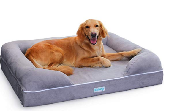 beds for arthritic dogs
