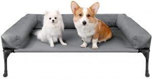 dog-cot