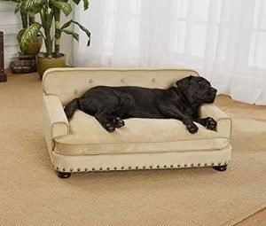 enchanted-dog-sofa