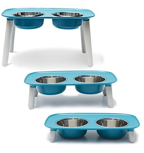 Best Elevated Dog Bowls