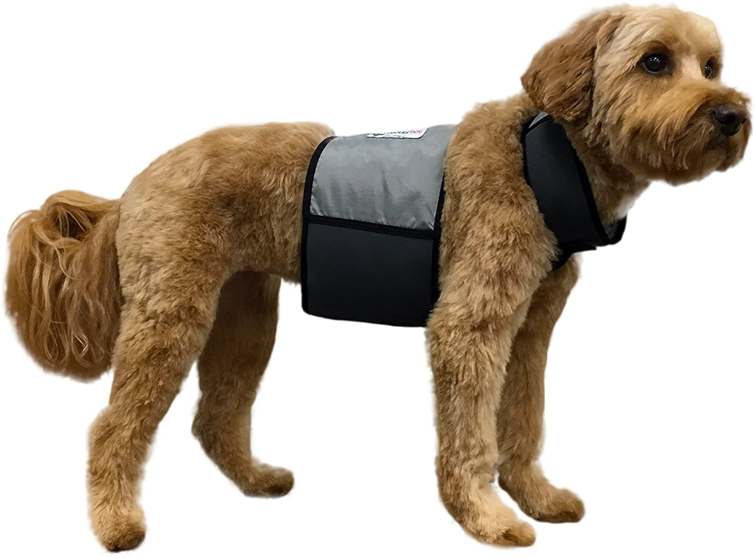 best cooling vests for dogs in humid weather