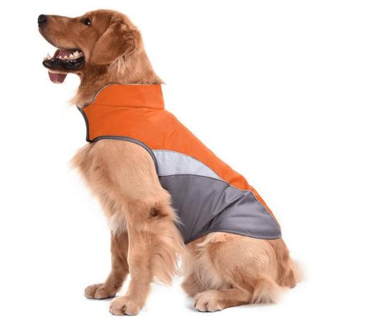 Best Reflective Dog Vests