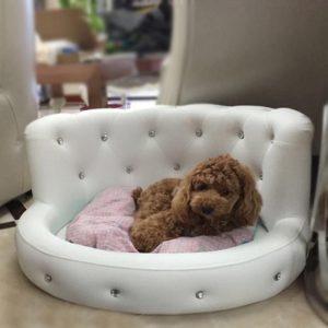 luxury-princess-dog-sofa-bed
